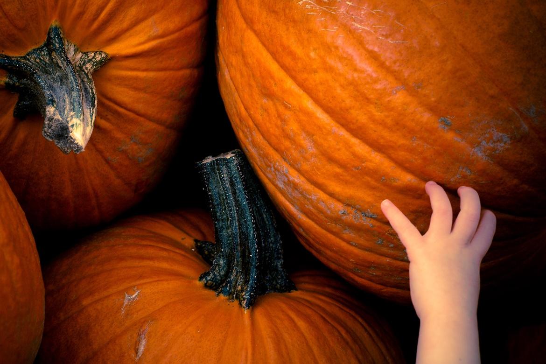 Halloweenowy kicz dla grzeszników