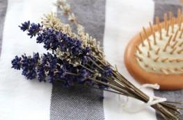 kosmetyki z olejem konopnym